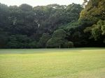 神宮3.jpg
